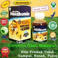 Suplemen Madu Anak - Walatra Hexabumin 100% ASLI Original