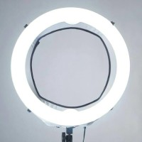 Ring Light LED for Beauty Shoot. Andoer LA650