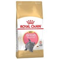 ROYAL CANIN BRITISH SHORTHAIR KITTEN 400GR / BRITISH SHORTHAIR KITTEN