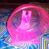 Jogging Wheel Hamster Ukuran Besar