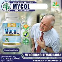 Obat Herbal Kolesterol - MYCOL