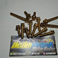 PROBOLT CVT GOLD FOR MIO