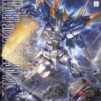 HBJ493 MG Gundam Astray Blue Frame D