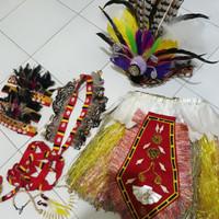 Baju adat papua / Kostum Papua / Pakaian adat papua glamour