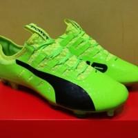 Sepatu Bola  Puma evoPOWER Vigor 1 Green Gecko  FG