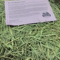 Orchard Grass Hay Oxbow 1 kg / Makanan Kelinci / Rabbit Food Orchad