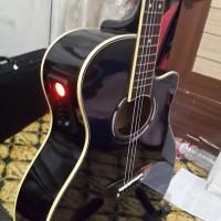 Gitar akustik apx 500 elektrik tuner