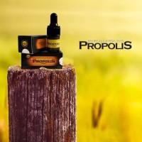 Propolis Nano Brazilian Harmoni Obat Herbal Sakit Gigi , Luka Sariawan