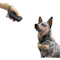 Ultrasonic Dog Repeller Chaser Training with 2 Flashlights -