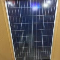 solar panel cell surya st solar stc stec module 100wp 100 wp poly 12v