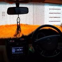 terbaru Alas Bulu Cover Penutup Dashboard Mobil Bulu Panjang Warna Or