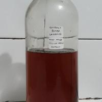 Bunga Lawang Extract