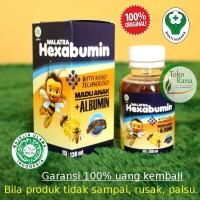 HEXABUMIN Walatra - ORIGINAL madu albumin gabus bukan vitabumin