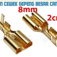 Skun Gepeng 8mm Cewek Female Kecil / Soket / Skun Motor / Skun kabel