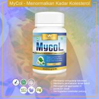 MYCOL - OBAT PENURUN KOLESTROL TINGGI DALAM TUBUH