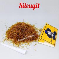 Tembakau sileugit
