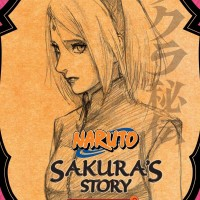 Naruto Secret Chronicles: Sakura's Story [Light Novel]