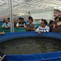 Terpal kolam bulat D 2,5x1,40 bahan semi karet 0,90