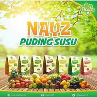 Nayz Pudding Susu bayi / anak