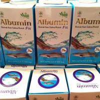 Kapsul ikan gabus/albumin fit