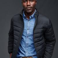 Jaket Musim Dingin Pria Gap