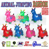 Mainan Kuda Kudaan Tunggang Karet dengan Music Bunyi dan Lampu Promo