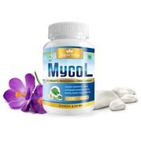 MyCol - Kapsul Herbal Untuk Penderita Kolesterol Tinggi