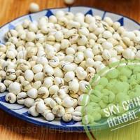Chuan Bei (Obat Batuk Anak) Premium/ Frittilaria Bulb
