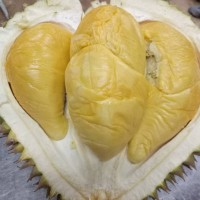Durian kupas Medan Ucok