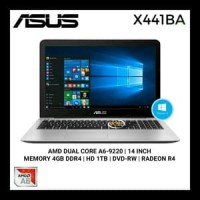 Laptop Asus AMD A6 X441BA-GA601T