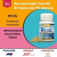 Obat Herbal Kapsul BPOM MYCOL Untuk Menurunkan Kolester Diskon