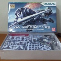 HG 1/144 GN-X III EARTH FEDERATION TYPE