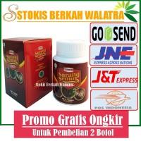 Walatra Sarang Semut Papua Di Surabaya Solusi Pengobatan Kanker