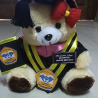 BEAR CREAM 25CM / BONEKA WISUDA TOGA CUSTOM UNIVERSITAS