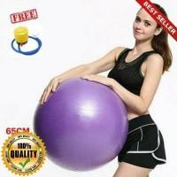 O-Outdoor Gym ball Yoga ball Plus Pompa Diameter 65cm