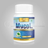 Obat Menyembuhkan Kolesterol Tinggi - MYCOL Herbal BPOM