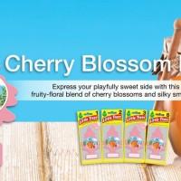LITTLE TREES CHERRY HONEY BLOSSOM LITTLE TREES PARFUM MOBIL