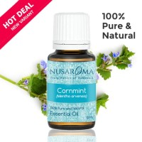 Cornmint Oil ( Mentha arvensis ) 10 ml | 100% Pure & Natural