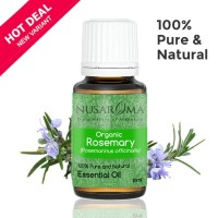 Rosemary Essential Oil ( Organic ) 10 ml | 100 % Pure & Natural EO