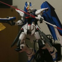 Gundam Freedom MG 1/100