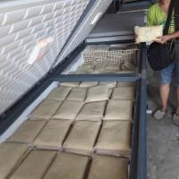 durian beku original medan