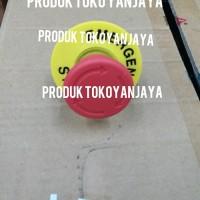 emergency stop push button lock/emergency push button