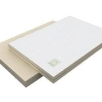 Dooglee - Matress Pad 150 x 100 x 5cm