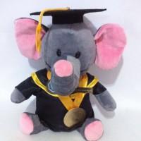 Boneka Animal Binatang Gajah Wisuda