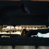 Saxophone Alto Peganini Gold Original RECOMENDED PRODUCT. BEST PRICE.