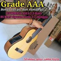 Gitalele elektrik & softcase,gitarlele,gitar mini doremi