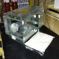 Akrilik Fullset Kandang Hamster Sugar Glider Landak P45cm