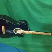 gitar akustik elektrik gojek grab