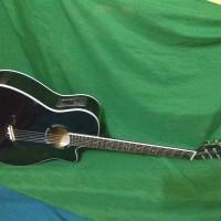 Gitar akustik elektrik apx pemula