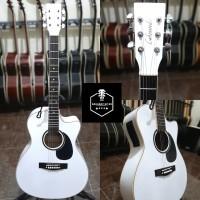 lakewood gitar akustik elektrik bukan fender ibanez yamaha gibson ltd